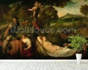 Pardo Venus or Jupiter and Antiope (oil on canvas) mural wallpaper in-room view