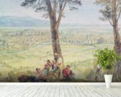 Rome from Monte Mario, c.1818 (w/c over pencil on paper) mural wallpaper in-room view