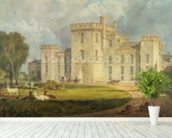 View of Hampton Court from the North-west, c.1806 (pen & ink and w/c over pencil on wove paper) wallpaper mural in-room view