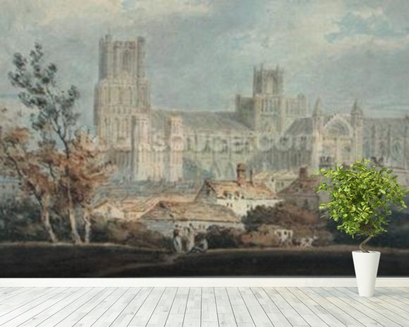 View of Ely Cathedral (pencil & w/c on paper) mural wallpaper room setting