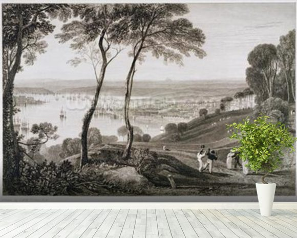 Plymouth Dock from Mount Edgecombe, from Cookes Picturesque Views of the Southern Coast of England engraved by William Bernard Cooke (1778-1855) 1814-26 (etching) wall mural room setting
