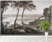 Plymouth Dock from Mount Edgecombe, from Cookes Picturesque Views of the Southern Coast of England engraved by William Bernard Cooke (1778-1855) 1814-26 (etching) wall mural in-room view