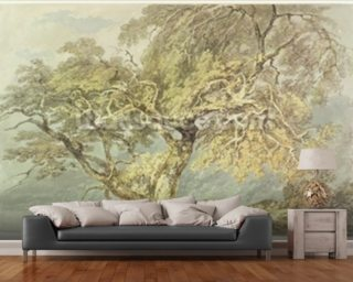 A Great Tree, c.1796 (w/c over graphite on paper) wallpaper mural