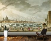 Lord Nelsons funeral procession by water from Greenwich to Whitehall from The History and Graphic Life of Nelson, engraved by J. Clark and H. Marke, pub. by Orme, 1806 (coloured engraving) mural wallpaper kitchen preview