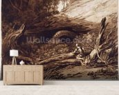 Jason, engraved by Charles Turner (1773-1857) (engraving) mural wallpaper living room preview