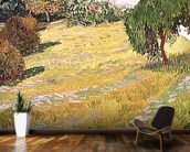 Field in Sunlight, 1888 (oil on canvas) wall mural kitchen preview