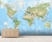 World Wall Map (Environmental) mural wallpaper living room preview