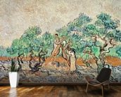 The Olive Grove, 1889 (oil on canvas) wallpaper mural kitchen preview