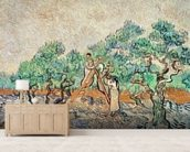 The Olive Grove, 1889 (oil on canvas) wallpaper mural living room preview