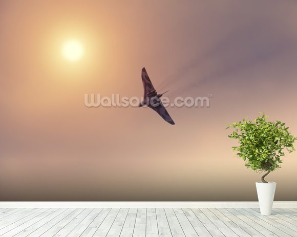 Vulcan Bomber Towards the Sun wall mural room setting