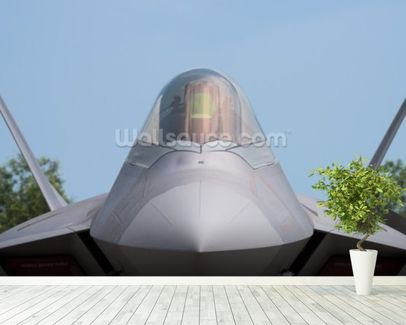 Stealth Fighter Jet wallpaper mural room setting