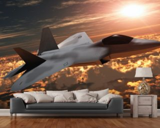 F-22 Fighter Jet wall mural