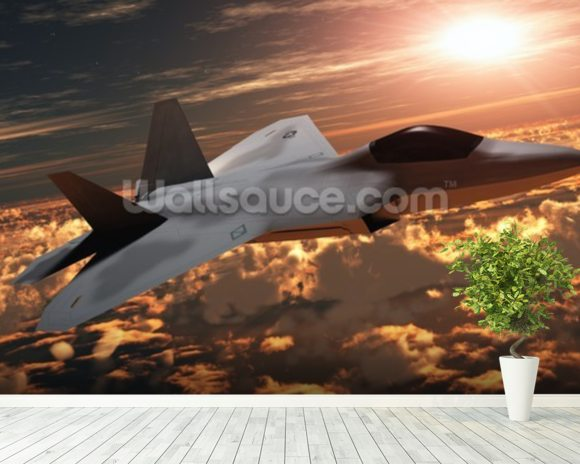 F-22 Fighter Jet wall mural room setting