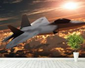 F-22 Fighter Jet wall mural in-room view