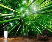 Bamboo Forest mural wallpaper kitchen preview