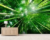 Bamboo Forest mural wallpaper living room preview