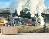 Full Steam Ahead wallpaper mural living room preview