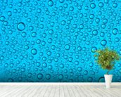 Droplets on Glass wall mural in-room view