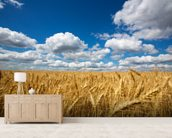 Wheat Field wallpaper mural living room preview