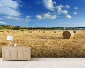Hay Bales wall mural living room preview