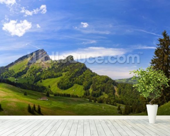 Mountain Pasture wall mural room setting