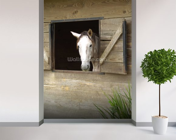 Stabled Horse mural wallpaper room setting