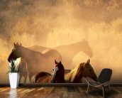 Wild Horses wallpaper mural kitchen preview