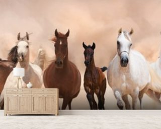 Herd of Horses Panoramic Wallpaper Mural Wall Murals Wallpaper
