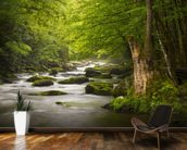 Great Smoky Mountains Tremont River wall mural kitchen preview