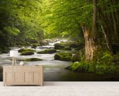 Great Smoky Mountains Tremont River wall mural living room preview