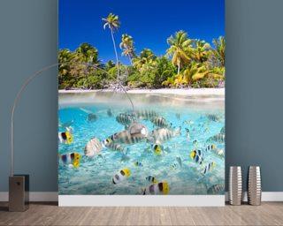 Tropical Fish Wallpaper Sea Life Wall Murals Wallsauce USA