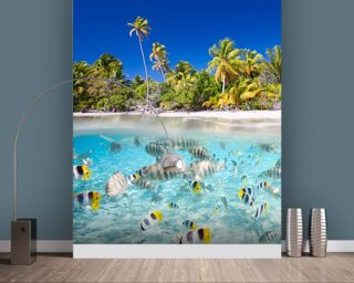 fish wallpaper tropical wall murals wallsauce australia
