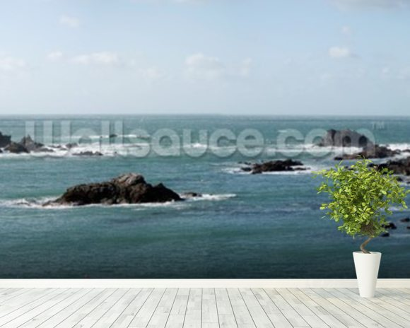 Rocky Coastline wall mural room setting