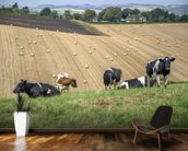 South Downs Farmland wallpaper mural kitchen preview