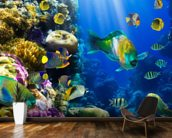 Coral Colony and Coral Fish mural wallpaper kitchen preview