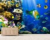 Coral Colony and Coral Fish mural wallpaper living room preview