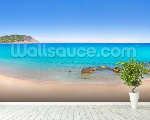 Aiguas Blanques, Ibiza wall mural room setting