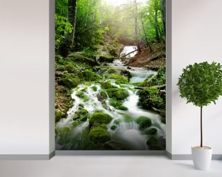 Foggy Forest Waterfall Wall Mural Wallpaper Part 57