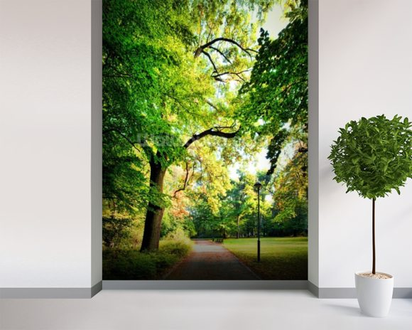Early Autumn Parkland mural wallpaper room setting