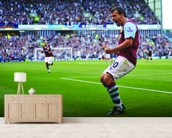 Robbie Blake Celebration, Burnley v Man Utd wallpaper mural living room preview