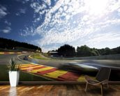 Radillion Corner, Spa-Francorchamps 2013 mural wallpaper kitchen preview