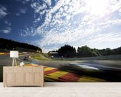 Radillion Corner, Spa-Francorchamps 2013 mural wallpaper living room preview
