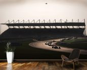 Turn 2, Indian Grand Prix mural wallpaper kitchen preview