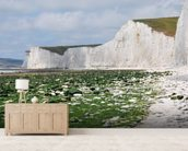 The White Cliffs of Dover mural wallpaper living room preview