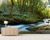Golitha Falls Cornwall wallpaper mural living room preview