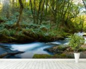Golitha Falls Cornwall wallpaper mural in-room view