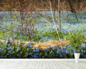 Spring Forest Flower Panoramic mural wallpaper in-room view