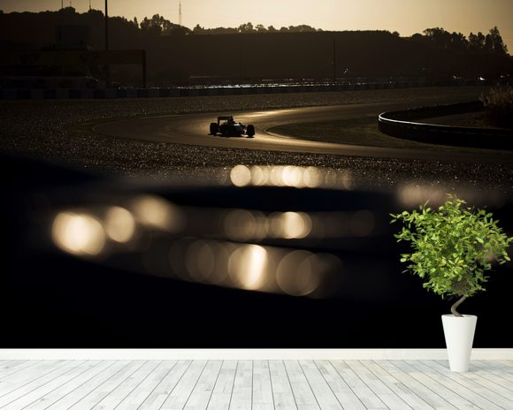 Formula 1 Car Jerez 2014 mural wallpaper room setting