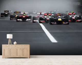 Hungarian Grand Prix 2011 mural wallpaper