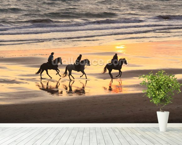 Sunset Horse Ride wallpaper mural room setting